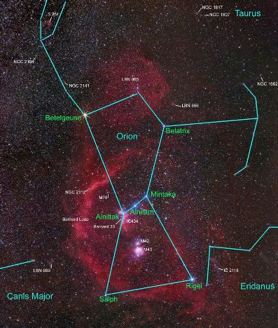 The Stars of Orion
