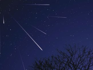 Leonid Meteor Shower