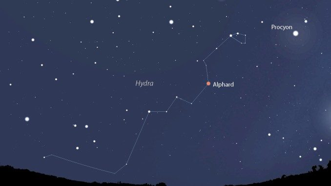 Hydra, the Night Sky's Largest Constellation