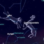 Star Constellation Facts: Camelopardalis