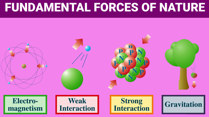 Have Scientists Discovered A 5th Force of Nature?