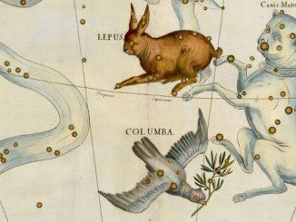 Star Constellation Facts: Columba