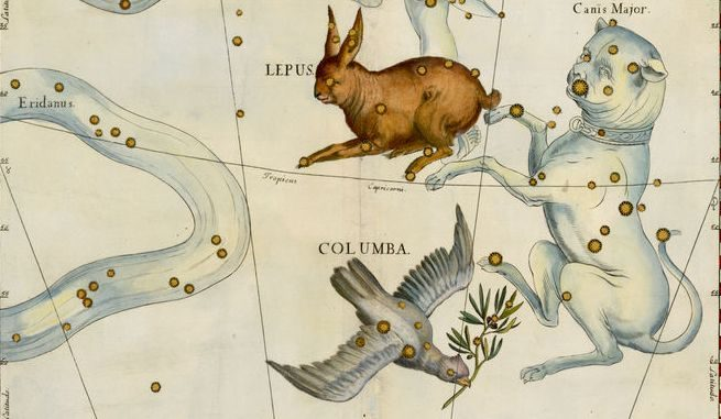 Star Constellation Facts: Columba