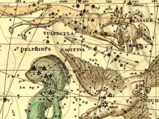 Star Constellation Facts: Vulpecula