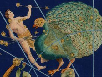 Star Constellation Facts: Indus