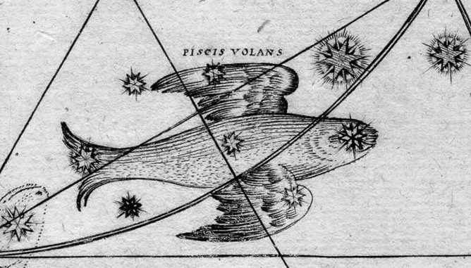 Star Constellation Facts: Volans