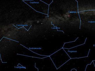 Lacerta Constellation