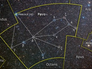 Pavo Constellation Stars