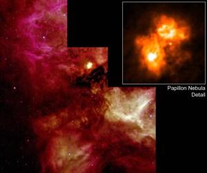 Papillon Nebula