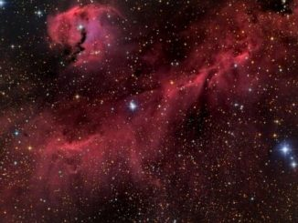 Parrot's Head Nebula