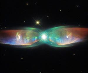 Siamese Squid Nebula