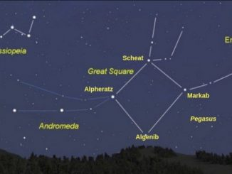 Perseus Constellation Family